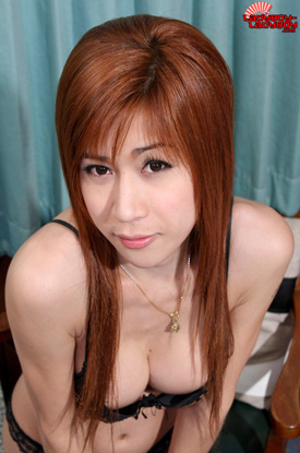 Lee on Ladyboy-Ladyboy!