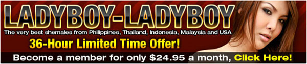 ladyboy ladyboy sale The Sexy Girls Of Ladyboy Ladyboy Are On Sale!