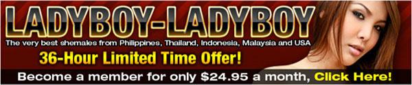 ladyboy ladyboy sale The Sexy Girls Of Ladyboy Ladyboy Are On Sale!