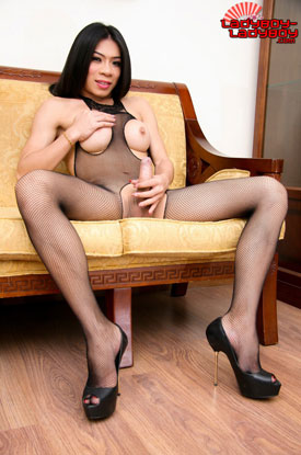 t ladyboy cindy ladyboy ladyboy 04 Ladyboy Cindy In Her Fishnet Bodystocking On Ladyboy Ladyboy!