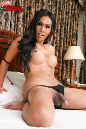 t ladyboy fa ladyboy ladyboy 03 Ladyboy Fa Will Have You Singing On Ladyboy Ladyboy!