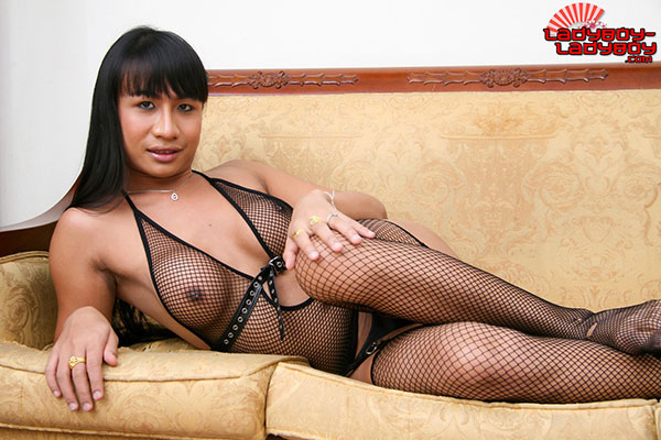 t ladyboy um ladyboy ladyboy 01 Ladyboy Um Strips Down And Shows Her Ass On Ladyboy Ladyboy!