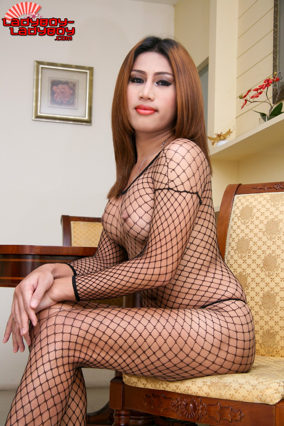 LADYBOY AMY BLOG