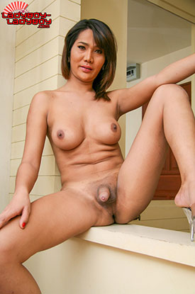 t ladyboy kitima ladyboy ladyboy 03 Window Undressing With Ladyboy Kitima On Ladyboy Ladyboy!